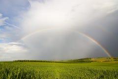 Vollkommener Regenbogen stockfotografie