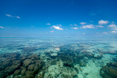 Vollkommener tropischer Inselparadiesstrand Stockbilder