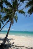 Vollkommener tropischer weißer Sandstrand Stockfotos