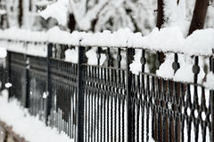 Vollkommener Winter-Tag Lizenzfreie Stockfotografie