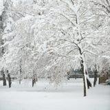 Vollkommener Winter-Tag Lizenzfreies Stockfoto