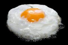 Vollkommenes bratenes Ei auf schwarzem Hintergrund Stockfotografie
