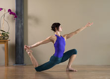 Vollkommenes Yoga Stockfotografie