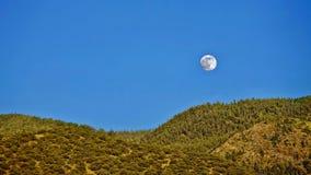 Vollmond über Hügeln und Wald lizenzfreie stockfotos