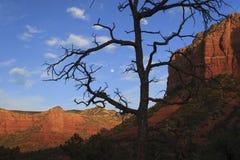 Vollmond über roten Felsen stockbild