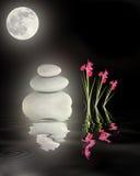 Vollmond über Zen-Garten Stockfotografie