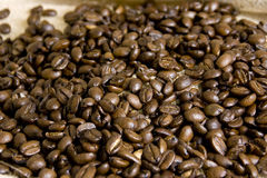 Vollständige Bohnen des Kaffees auf Leinwand Stockbild