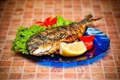Vollständige griled dorada Fische Lizenzfreies Stockbild