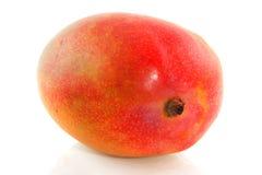 Vollständige Mangofrucht Stockfoto