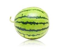 Vollständige Wassermelone Stockbild