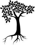Vollständiger schwarzer Baum mit Wurzeln - Vektor Stockbild