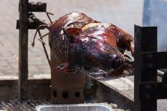 Vollständiges Braten-Schwein Stockbilder