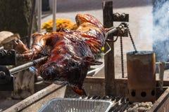 Vollständiges Braten-Schwein Stockfoto