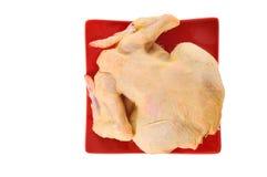 Vollständiges Huhn Stockfotografie