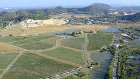 Volo aereo sopra le vigne situate accanto ad un fiume nella zona tropicale dell'Asia video d archivio
