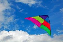 Volo del cervo volante Fotografia Stock