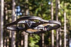 Volo del fuco attraverso gli alberi fotografia stock