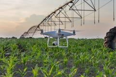 Volo del fuco davanti all'impianto di irrigazione nel campo di grano fotografia stock libera da diritti