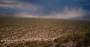 Volo del fuco sopra il campo scenico del deserto del cactus, parete epica della tempesta di sabbia che viene su vicino al parco n archivi video