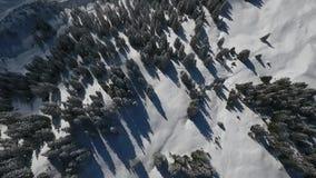 Volo del fuco sopra un paesaggio di inverno video d archivio