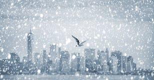 Volo del gabbiano contro Manhattan immagini stock