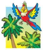 Volo del pappagallo sopra le palme Fotografie Stock