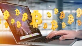 Volo del segno di Bitcoin intorno ad una connessione di rete - 3d rendono Immagine Stock Libera da Diritti