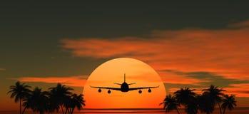 Volo dell'aeroplano al tramonto sopra le palme Fotografia Stock