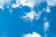 Volo dell'aquila rapace della siluetta sotto il sole luminoso ed il cielo nuvoloso in primavera fotografia stock