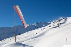 Volo della bandiera Fotografie Stock Libere da Diritti
