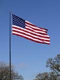 Volo della bandiera americana. Immagine Stock