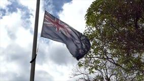 Volo della bandiera della Nuova Zelanda in cielo blu video d archivio