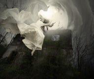 Volo della sposa Fotografia Stock