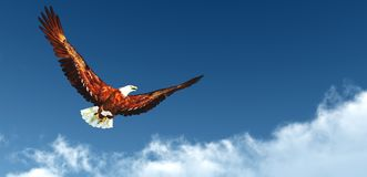 Volo di Eagle sopra le nuvole Fotografia Stock