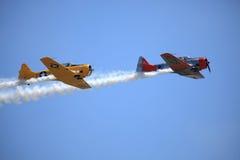 Volo di Phoenix Fotografie Stock
