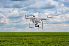 Volo di quadrocopter sopra il campo del fagiolo fotografie stock libere da diritti