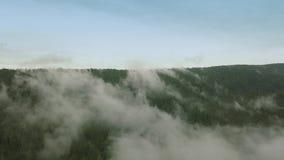 Volo mistico e nebbioso del fuco sopra la foresta pluviale in montagna Mosca sopra nebbia archivi video