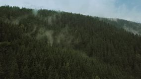 Volo mistico e nebbioso del fuco sopra la foresta pluviale in montagna Muova la macchina fotografica video d archivio