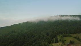 Volo mistico e nebbioso del fuco sopra la foresta pluviale in montagna Vista di panorama archivi video