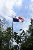 Volo panamense della bandiera nel vento Fotografie Stock Libere da Diritti
