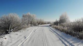 Volo regolare avanti sopra una strada nevosa Gli alberi e gli arbusti sono coperti di neve, bellezza dell'inverno archivi video