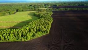 Volo sopra countryscape con i campi della foresta ed il terreno arabile video d archivio