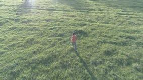 Volo sopra funzionamento sportivo dell'uomo al prato rurale perfetto dell'erba verde fuori strada Tramonto in montagna Colore pia video d archivio