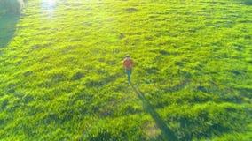 Volo sopra funzionamento sportivo dell'uomo al prato rurale perfetto dell'erba verde fuori strada Tramonto in montagna archivi video