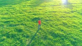 Volo sopra funzionamento sportivo dell'uomo al prato rurale perfetto dell'erba verde fuori strada Tramonto in montagna stock footage