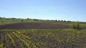 Volo sopra i campi agricoli del terreno arabile video d archivio