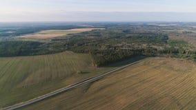 Volo sopra i campi di verde della campagna, la foresta e la molla in anticipo del villaggio, foto aerea di vista panoramica Fotografia Stock Libera da Diritti