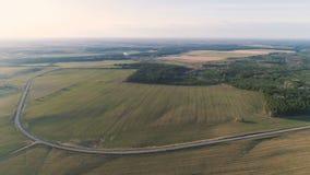 Volo sopra i campi di verde della campagna, la foresta e la molla in anticipo del villaggio, vista panoramica aerea archivi video