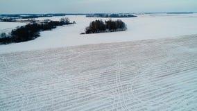 Volo sopra i filds nell'inverno video d archivio