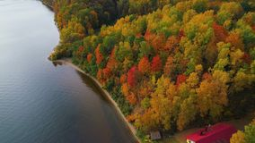 Volo sopra il lago e la foresta all'autunno video d archivio
